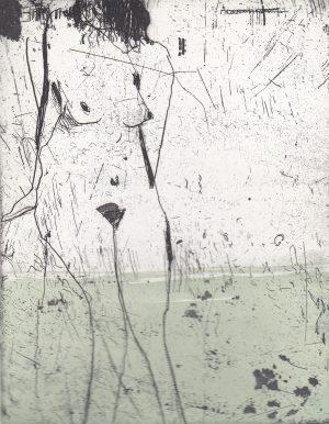 Graphic Studio Dublin •Marta Wakula-Mac: Graphic Studio Dublin: Nude II