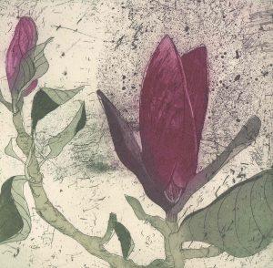 Graphic Studio Dublin •Marta Wakula-Mac: Graphic Studio Dublin: Purple Magnolia I