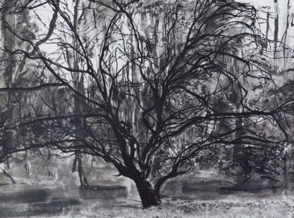 Graphic Studio Dublin: Geraldine O'Reilly, Tree