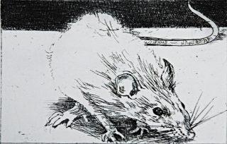 cullen_charles_rat