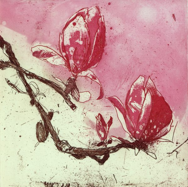 Graphic Studio Dublin: Marta Wakula-Mac, Magnolia III