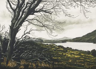 Louise Leonard, O, wild West Wind, 2014, Etching, Image Size 35H x 25W cm, Paper Size 50H x 43W cm. Top Margin 7.7cm €340