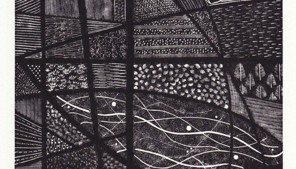 Susan Mannion - Botanic Reflections