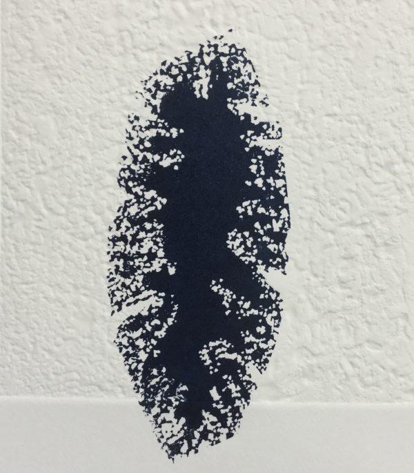 Graphic Studio Dublin: Susan Mannion, Dormancy