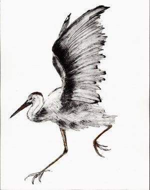Graphic Studio Dublin •Renate Debrun: Graphic Studio Dublin: Crane