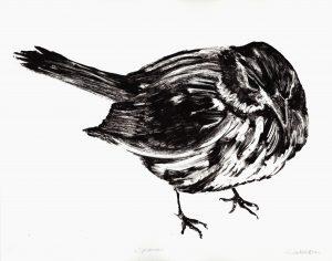 Graphic Studio Dublin •Renate Debrun: Graphic Studio Dublin: Sparrow