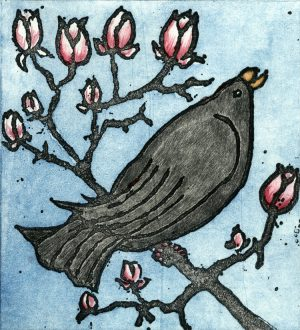 Graphic Studio Dublin • Margaret Becker: Graphic Studio Dublin: Blackbird and Magnolia