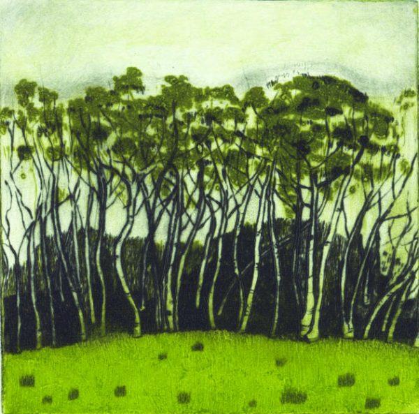 Graphic Studio Dublin: Carmel Benson, Birches