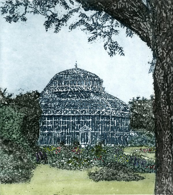 Graphic Studio Dublin: Susan Early, Palm House