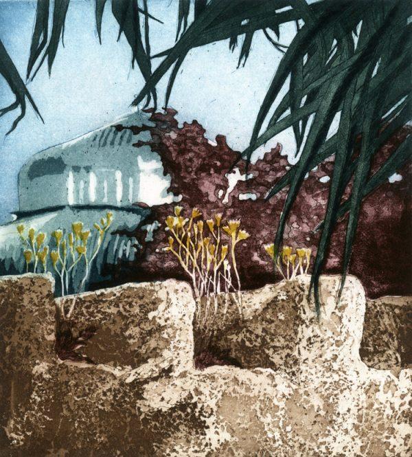 Graphic Studio Dublin: Paul Fitters, Wallflower: Hieracium maculatum