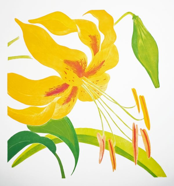 Graphic Studio Dublin: Blooming, Grainne Cuffe