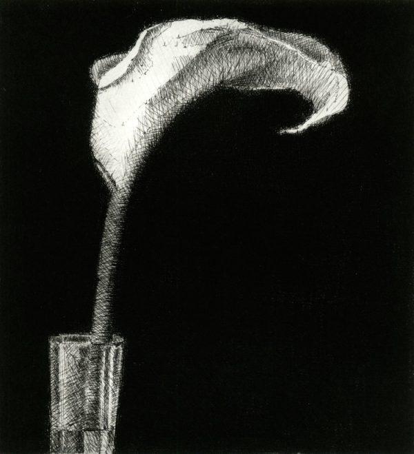 Graphic Studio Dublin: Arum Lily, Raphael Hynes