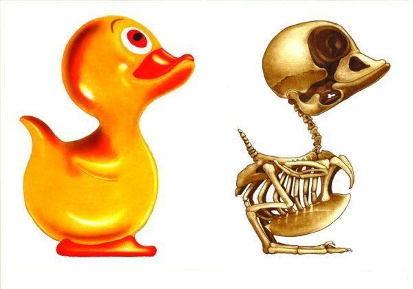 Graphic Studio Dublin: Anatomy of a Rubber Duck