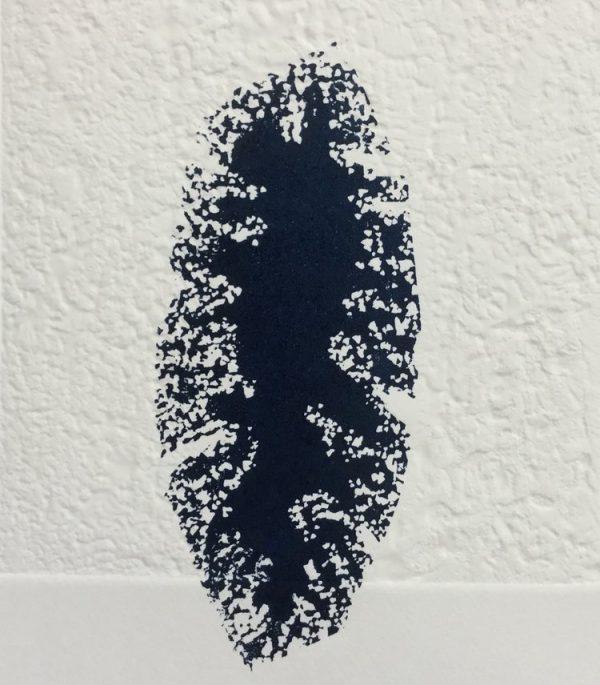 Graphic Studio Dublin: Dormancy, Susan Mannion