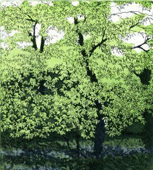 Graphic Studio Dublin: Brett McEntagart, Spring Foliage