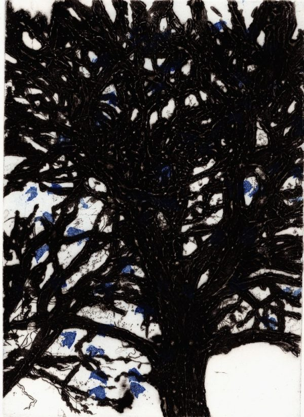 Graphic Studio Dublin: Margaret McLoughlin, Trees, Mountjoy Square