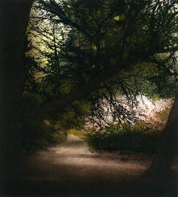 Graphic Studio Dublin: Robert Russell, By Addison's Walk