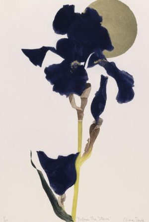 Graphic Studio Dublin •Cliona Doyle: Before the Storm, etching, 47 cm x 32 cm, [47 cm x 32 cm], Edition of 40, €580