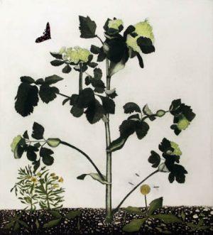 Graphic Studio Dublin •Cliona Doyle: Exotic Interlopers Dublin Port, etching, 74 cm x 84 cm, Edition of 30, €550