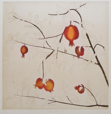Cliona Doyle, Pomegranate Tree, etching, Edition of 50, €740