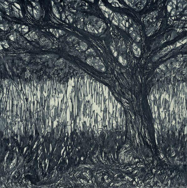 Josie McMorrin, Tree/monochrome/(24:24)/2018/35:38/£165