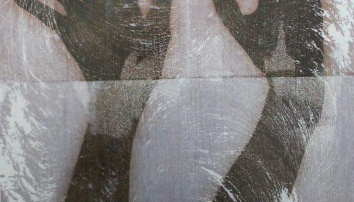NiamhMcGuinne_Self Perspectives (Nancy's Hands)_2917_thermal transfer screen print on aluminium_.42cm x 35cm_250euroJPG (1)