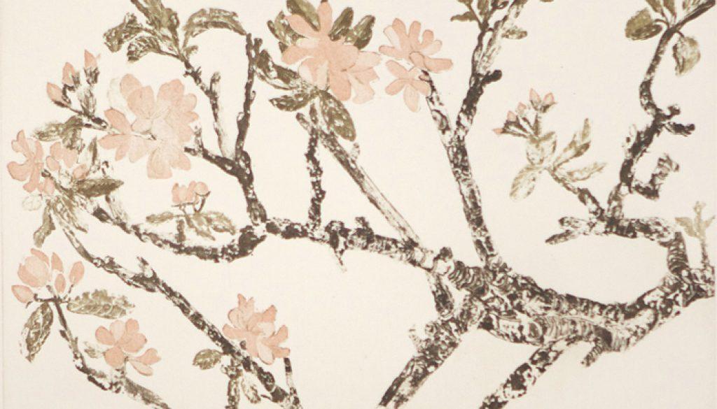 Cliona Doyle, Apple Blossom