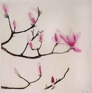 Graphic Studio Dublin •Cliona Doyle: Magnolia