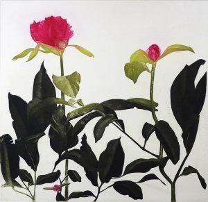Graphic Studio Dublin •Cliona Doyle: Paeony V