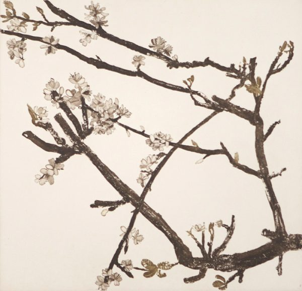Cliona Doyle, Pear Blossom