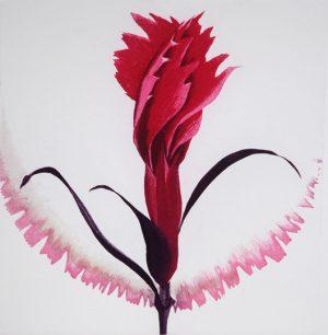 Grainne Cuffe, Dianthus V