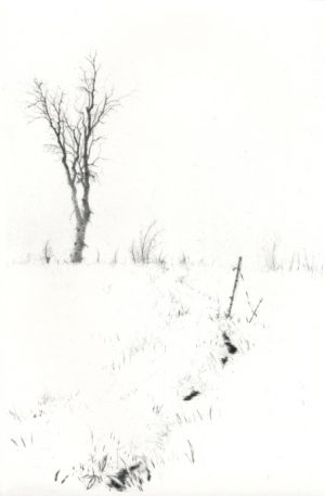 Graphic Studio Dublin • Lars Nyberg: In Winter Path
