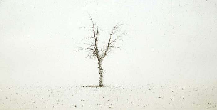 Lars Nyberg, Solitude
