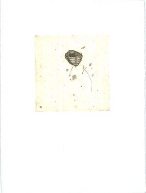 Graphic Studio Dublin •Merijean Morrissey: Glandelow Boat, 2012, Chine-Colle etching, (10cm x 10cm) 25.5cm x 19cm, 4.5cm, price