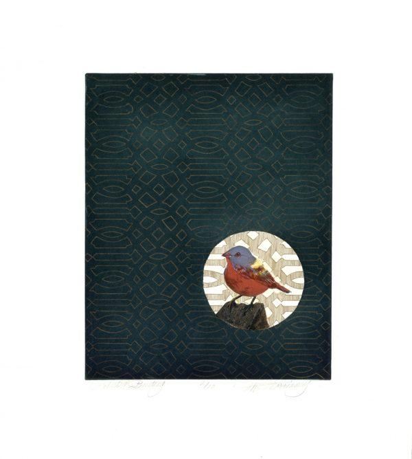Merijean Morrissey, Painted Bunting, 2014, etching, (34.5 cm x 27.5 cm) 52 cm x 42cm, 8cm, price