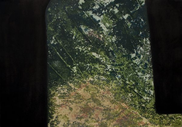 Glade Edition of 20 Carborundum and Etching Image and Paper size: 70h x 99w cm €660 unframed