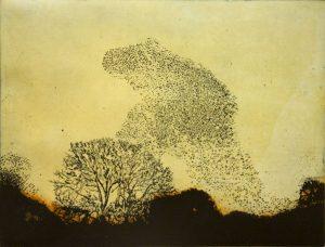 Graphic Studio Dublin •Vincent Sheridan: Vincent-Sheridan-print-etching-Murmuration