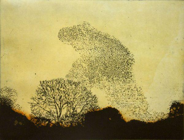 Vincent-Sheridan-print-etching-Murmuration