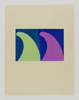 Graphic Studio Dublin •Tom Phelan: Fins, Japanese Bunkoshi paper 56 x 43 cm image size: 29.5 x 20.5 cm top border from paper: 15cm edition of 30