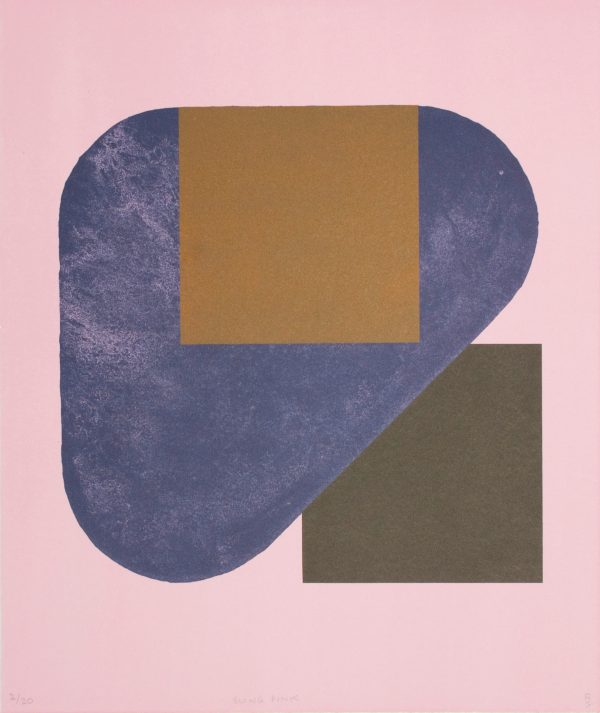Graphic Studio Dublin: Richard Gorman, Sling Pink