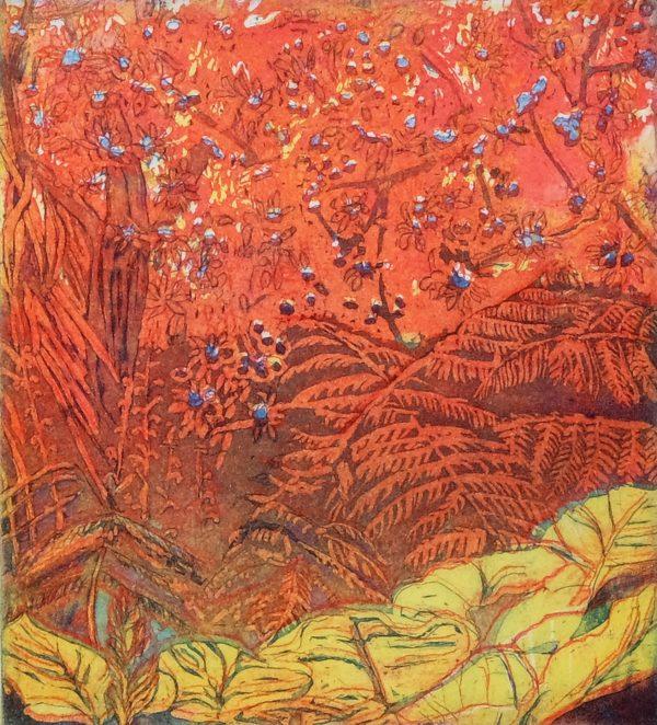 10. Adrienne Symes. Firey Ferns. Etching,Aquatint. (770KB)