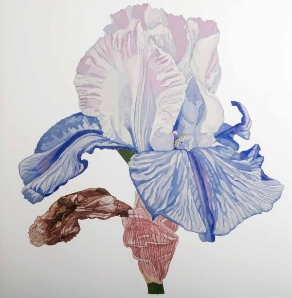 Graphic Studio Dublin: Nicola Lynch Morrin, Blue Falls