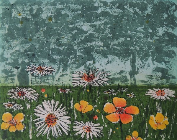 Mary Grey, Summer Meadow Medium Etching Edition Number 20 Paper size H 36.5 cm W 37.5 cm Plate size H 20 cm W 24.5 cm Unframed gallery selling price 135 euro Cost of frame to me 70 euro
