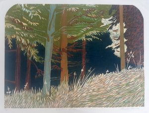 Graphic Studio Dublin • Pamela Leonard: Woodland Shadows
