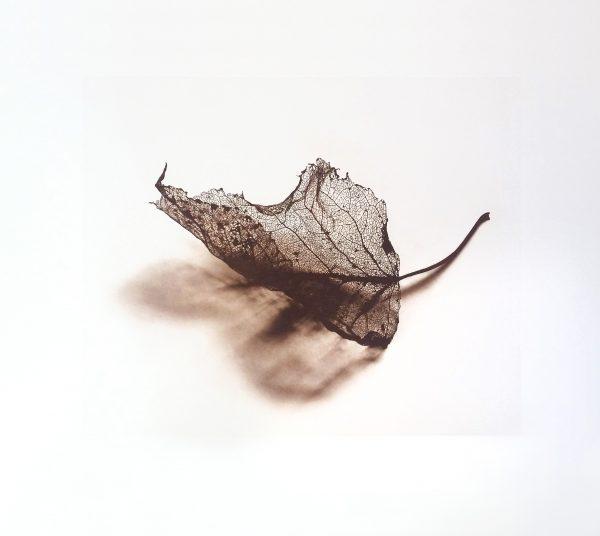 Graphic Studio Dublin: Aisling Dolan, Remain in Light