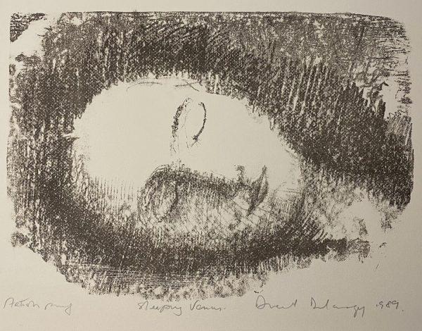 Dermot Delargy, Sleeping Venus €400