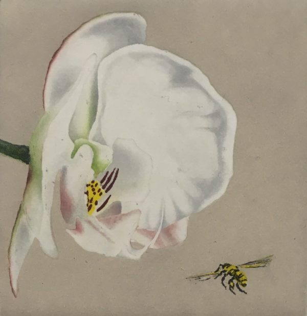 Graphic Studio Dublin: Maura Keating, Orchid and Bee