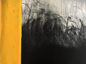 Graphic Studio Dublin •Hilary Kinahan: Hillary Kinahan, Saline