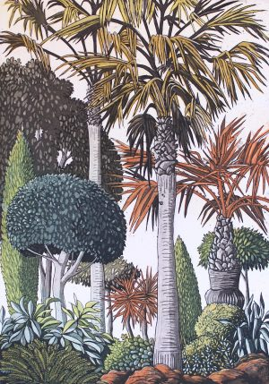 Graphic Studio Dublin •Pamela Leonard: Spanish Garden