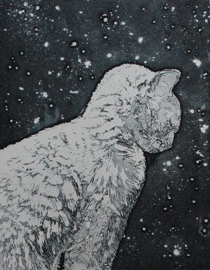 Graphic Studio Dublin • Camilla Fanning: Snow Cat
